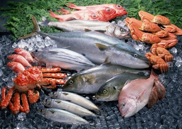 fresh_fish_192